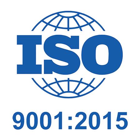 rayzeek iso 9001 certification